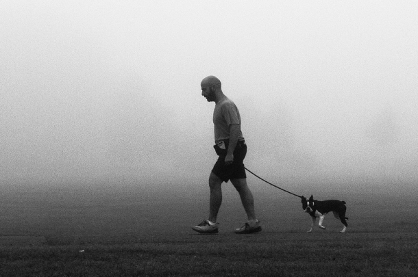 Brockwell Park in Fog by Alistair Hall dog walk