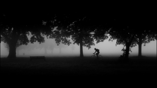 Brockwell Park in Fog by Alistair Hall plants cyclist