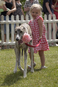 Ava and Tilly, Brockwell Park Dog Show-1-1