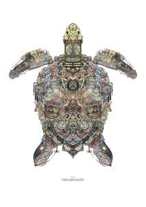 One of a pair of Hawksbill turtles made up of up to 100 images from vintage books