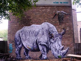 Rhino mural, by Louis Masai at the Duke of Edinburgh