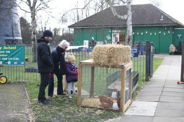 Brixton City Farm day by Liam N. Cohen