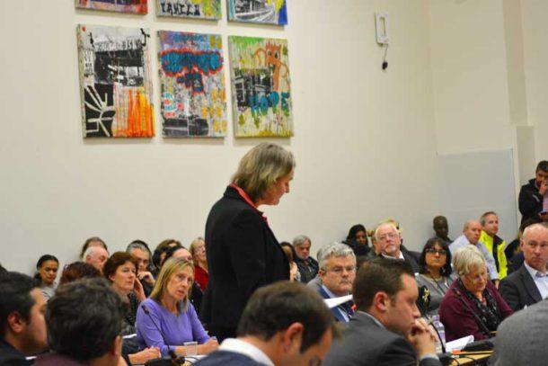 Lib Peck addresses libraries campaigners at a council meeting last November