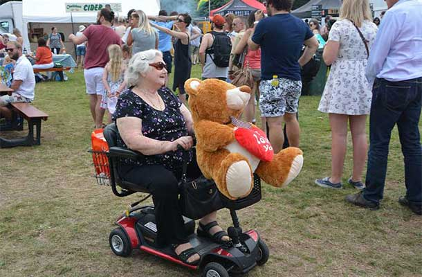 Bear and buggy