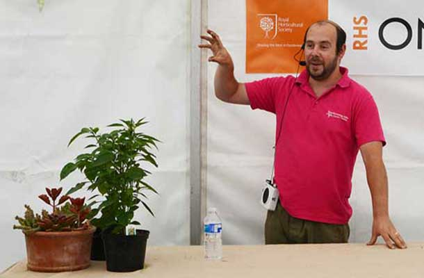 Chillies growing lecture