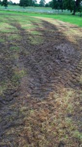 Damage in Brockwell Park after the Found festival in June