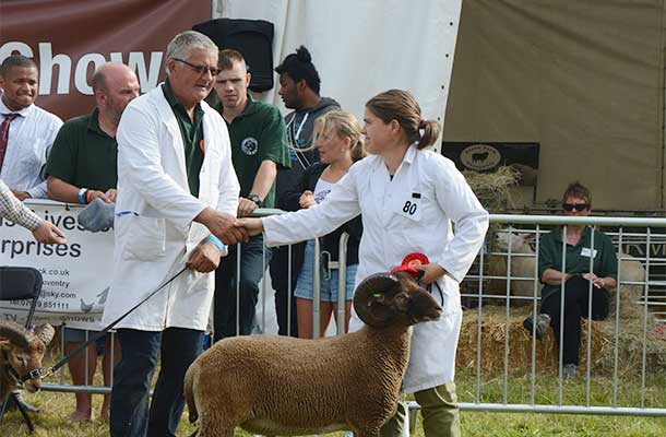 Winner and runner-up in the best sheep competition congratulate each other