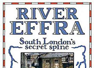 River Effra book cover