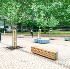 Fruit trees outside the barrier block