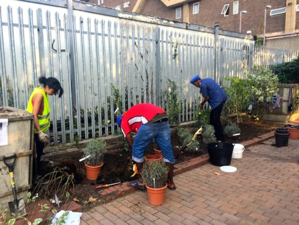 Incredible Edible Bus Stop team planting at Southwyck House