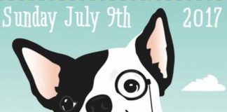 Dog Show poster 2017