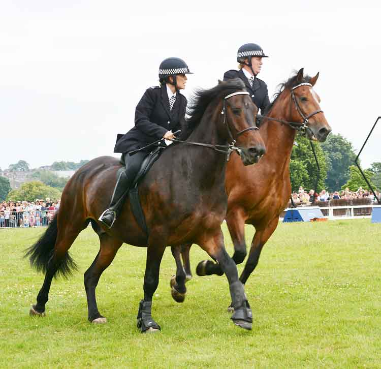 The Metropolitan Police mounted branch activity show