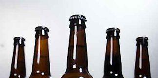 Canopy Bagel Beer bottles