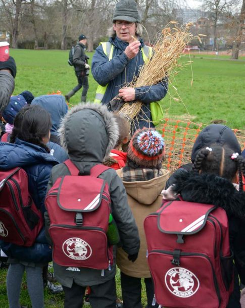 Hill Mead pupils learn about wheat and how it is grown