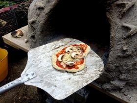 Cob pizza made at Brockwell Park Greenhouses