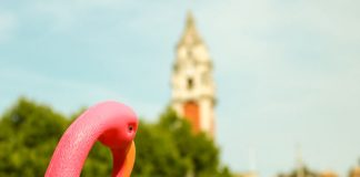 Plastic flamingos in Windrush Square