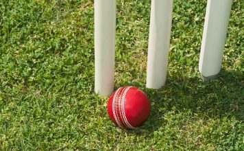 Stumps and cricket ball