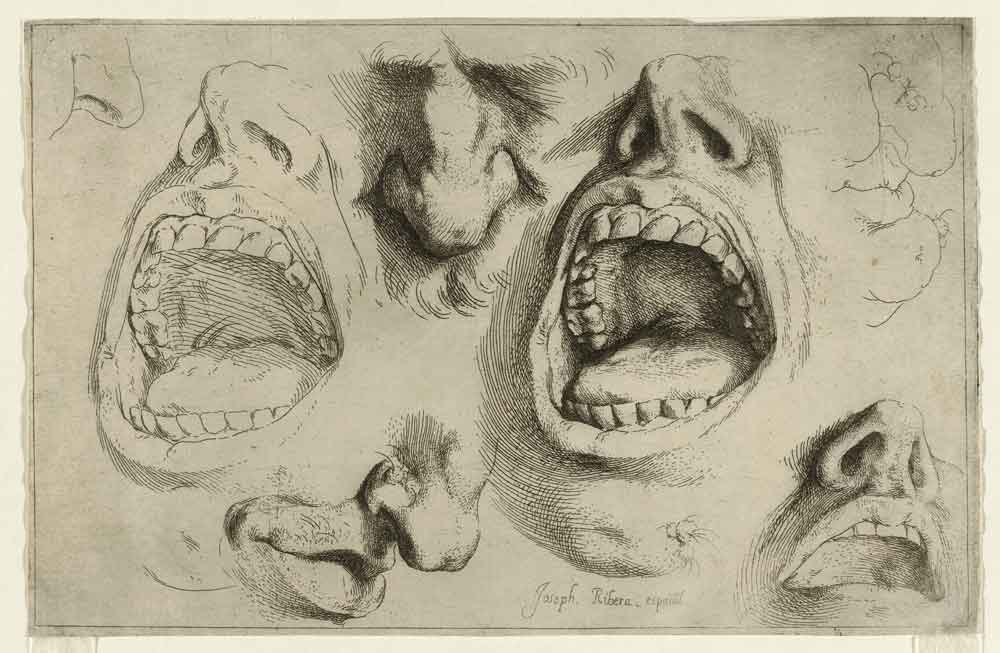 §Ribera Studies of the nose and mouth