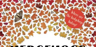 Book cover for Hedgehogs Don't Live in the City