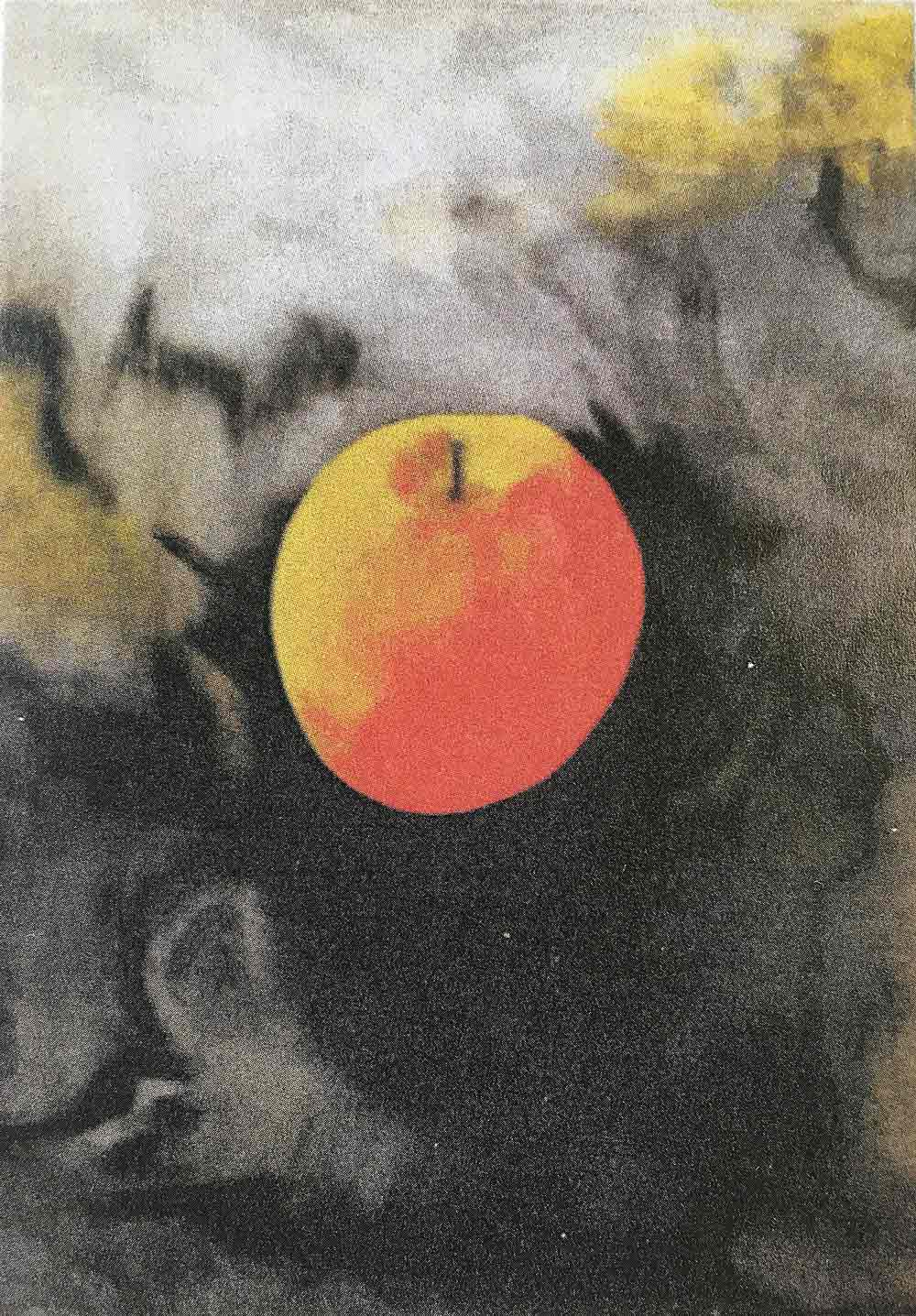 Isaac Newton's apple JOHN SPICER (self taught)
