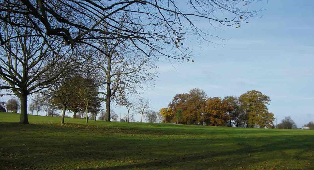 view of Brockwell Park