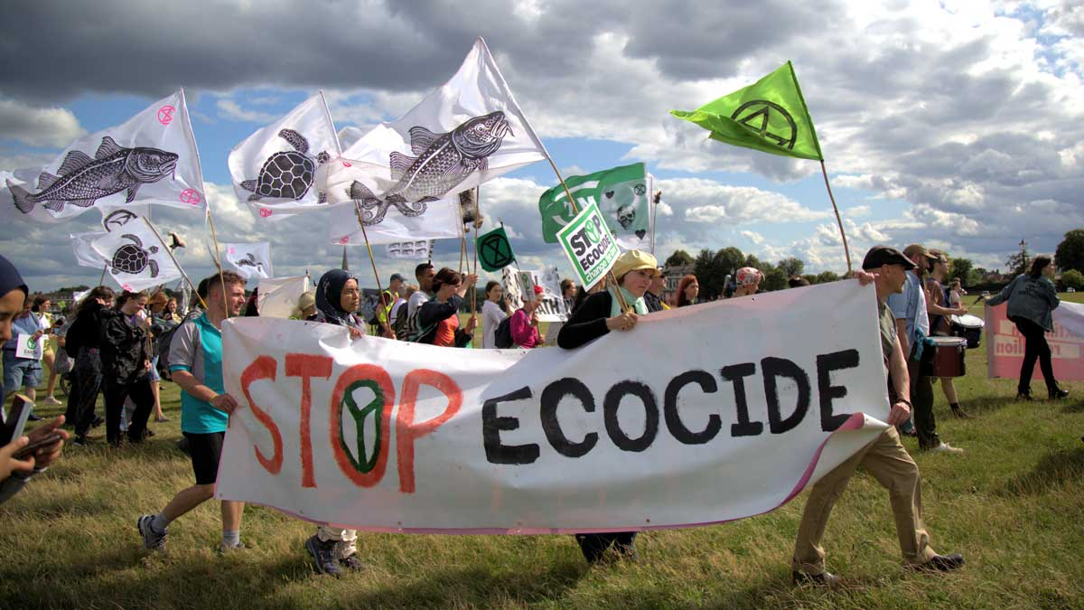Stop Ecocide banner XR Blackheath event