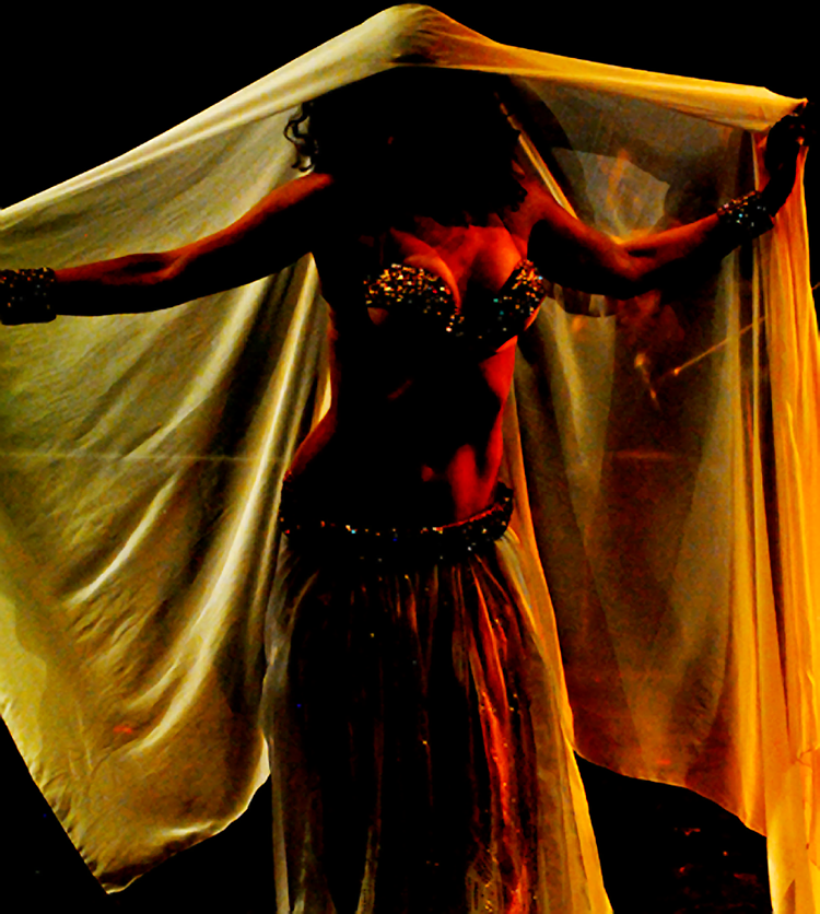 Belly dance dinner show
