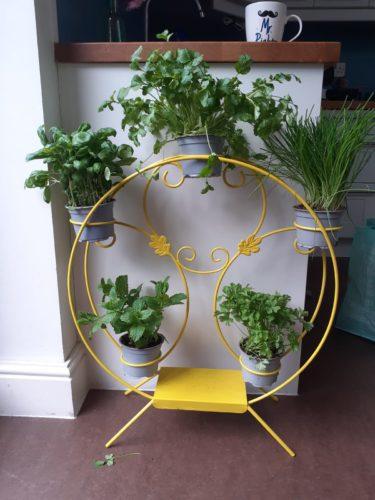 plant holder designed by local resident Charli Hogan