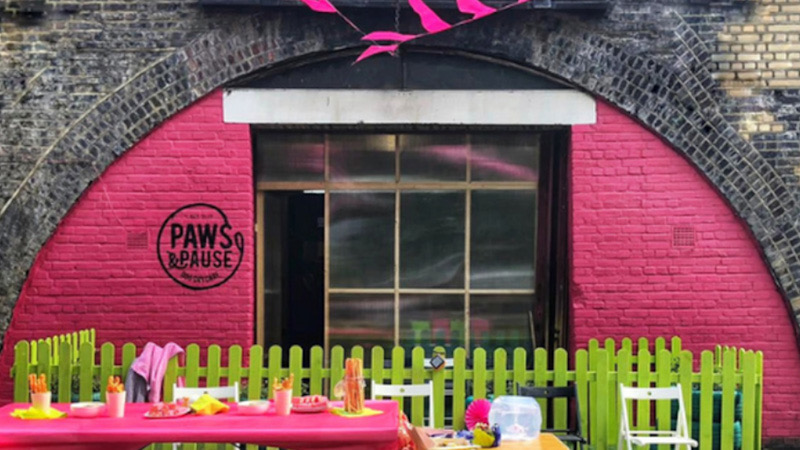 Paws and pause charity in the arches at Loughborough Junction