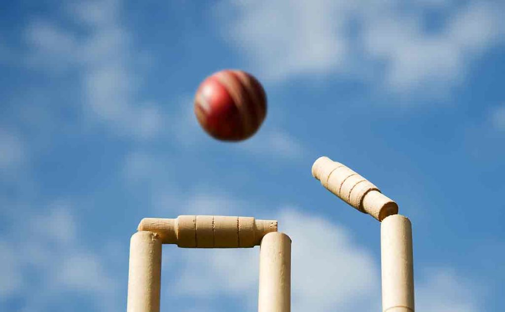 cricket ball, stumps and bails