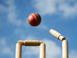 crick ball, stumps and bails