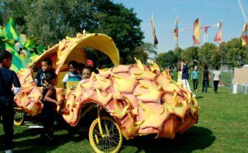 car made o look like pineapple