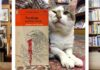 bookshop images