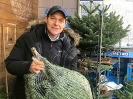 man with packaged Christmas tree