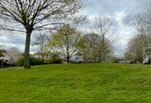 housing estate in park setting