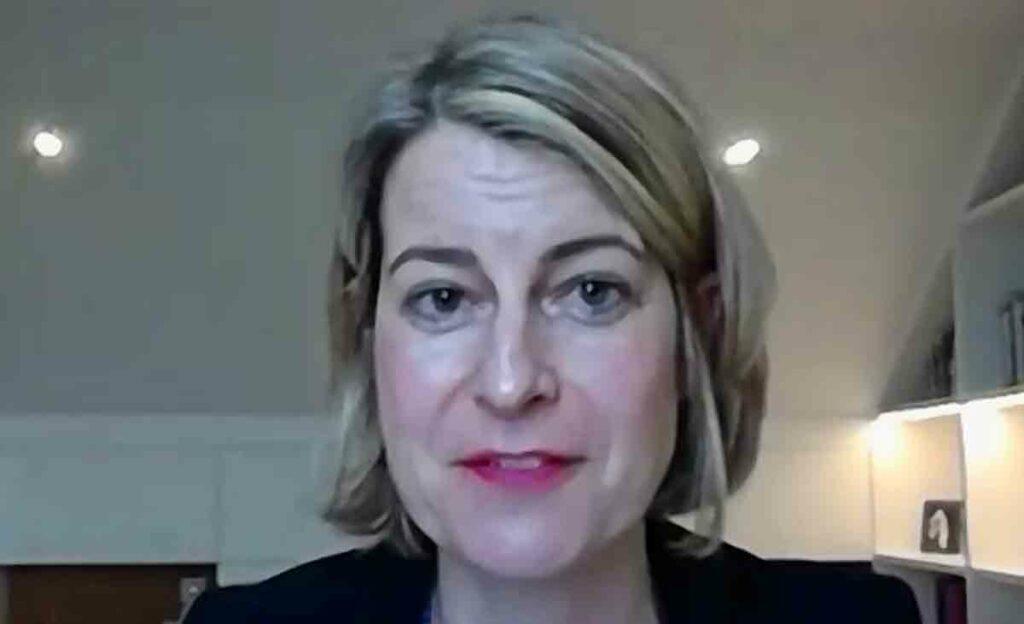 woman speaking in online meeting