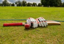 cricket bat, ball and gloves