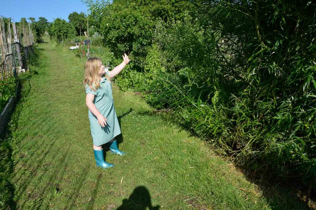 girl pointing to tree