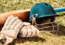 cricket bat, gloves and helmet on grass