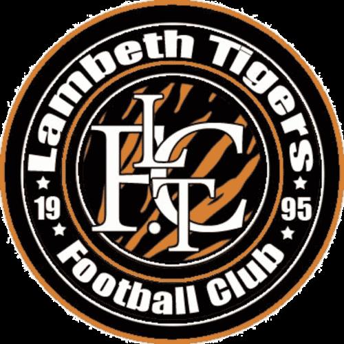 sports team logo