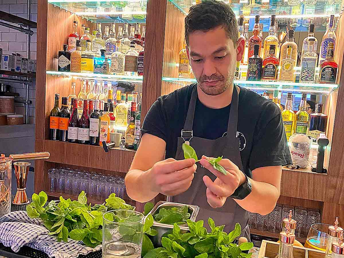 bartender with herbs